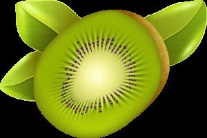 pp_abs-kiwi